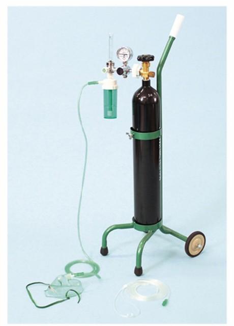 【送料無料】-酸素吸入器(キャリータイプ) OX-5...