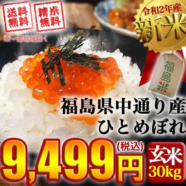 新米 お米 令和2年産 福島県中通り産ひとめぼれ ...