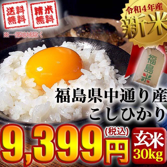 新米 お米 令和3年産 福島県中通り産 コシヒカリ ...