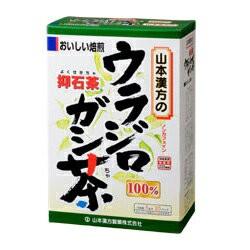 【山本漢方】100%ウラジロガシ茶 5g×20...