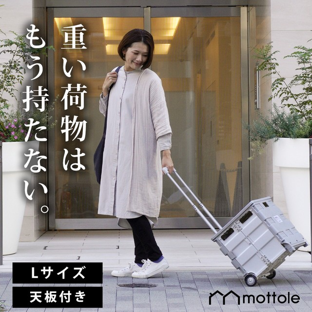 キャリーボックス L MTL-Z012 送料無料 mottole ...