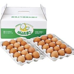[埼玉・坂戸]〈武藤養鶏場〉さかど葉酸たまご のし・包装不可