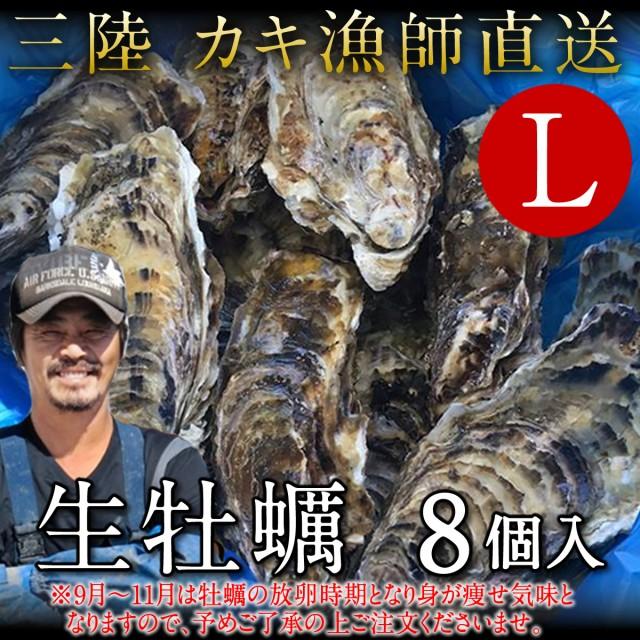 生牡蠣 殻付き L 8個 生食用 生ガキ 宮城県産 漁...