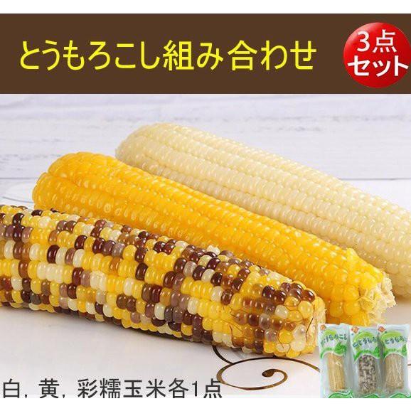 【3点セット】とうもろこし組み合わせ 白糯玉米...