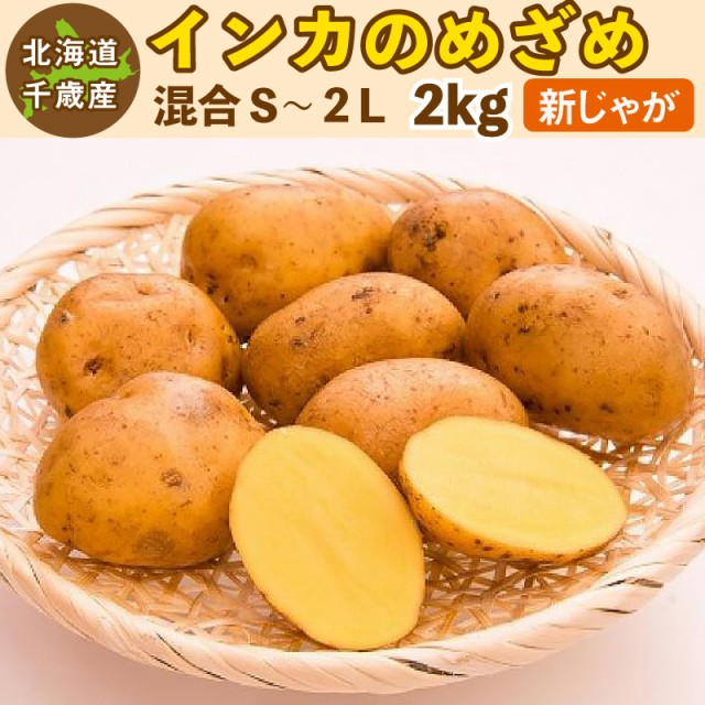 インカのめざめ 新じゃが 2kg S〜2Lサイズ混合 北海道 千歳産 ご予約販売 9月上旬発送  じゃがいも ジャガイモ 送料無料 訳あり