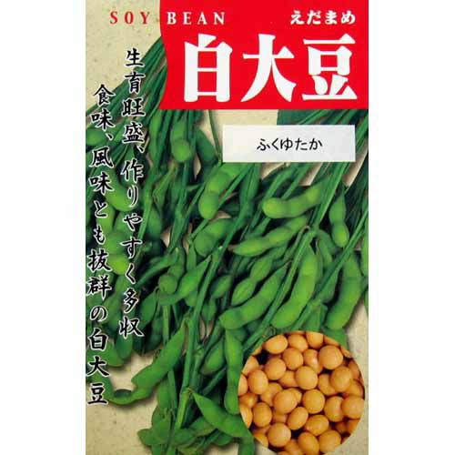 大豆種 白大豆 (ふくゆたか) ( だいずの種 ) 小袋...