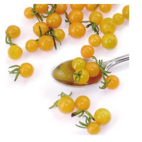 マイクロトマトの種 イエロートパーズ 小袋