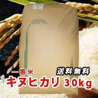 令和元年 新米 三重県産 キヌヒカリ (きぬひかり...