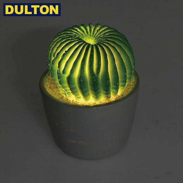 DULTON CACTUS L.E.D LIGHT TYPE-A (品番:G755-9...