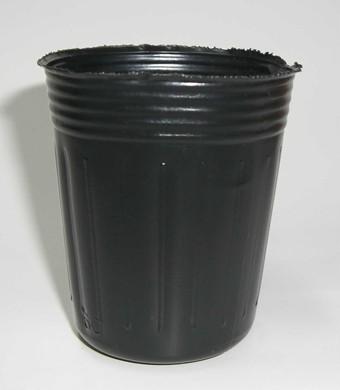 ポリポット深型 6.5cm 黒 100個