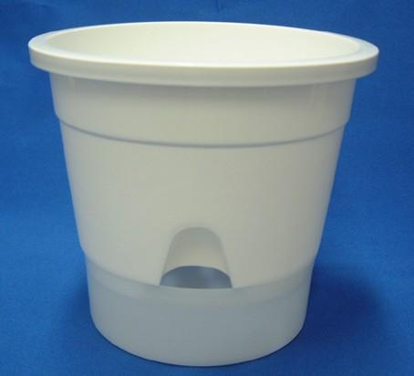 底面給水プラ鉢 5号 半透明受皿付き 10個セッ...