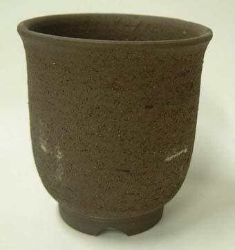 雪割草の植木鉢 4.0号 ユキワリソウ 鉢 植...