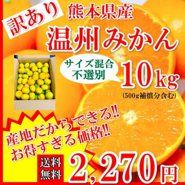 みかん 温州みかん 訳あり 熊本県産 3Sサイズ以上10kg (500g補償付き) 送料無料 蜜柑 ミカン 果物 フルーツ