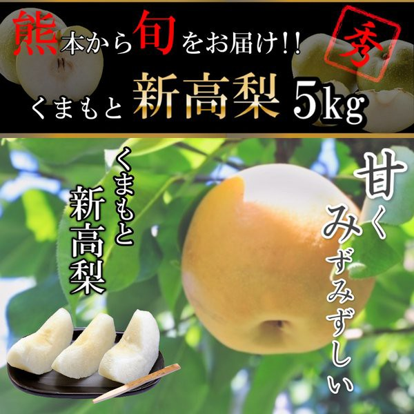 梨 熊本産 新高梨 5キロ 5-10玉 送料無料 果物 フ...