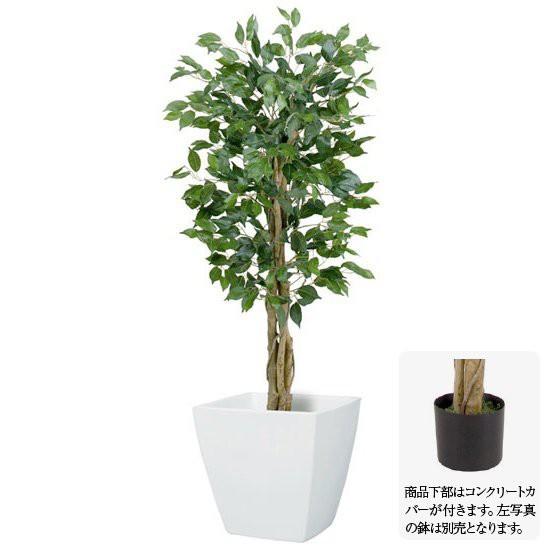 【観葉植物 造花】フィカスツリー SS 120cm ナチ...