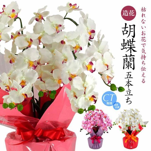 【胡蝶蘭 造花 お祝い】胡蝶蘭 大輪 5本立ち(ラベ...