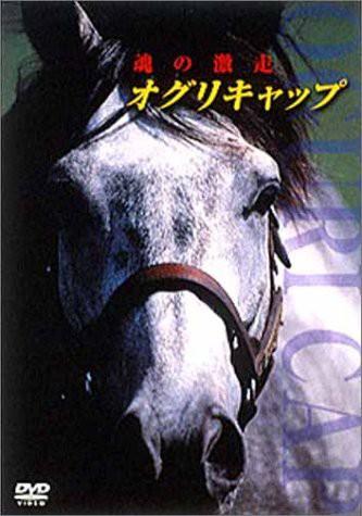 オグリキャップ 魂の激走 [DVD](中古品)