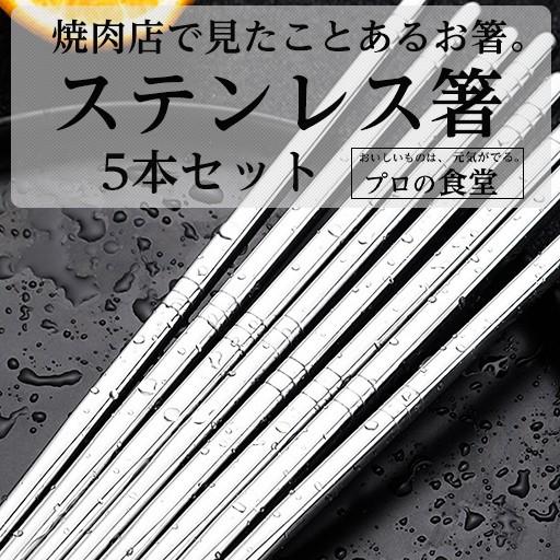 箸 5本セット 食器 おはし プロの食堂 韓国箸 ステンレス製 家族セット ポッキリ 雑貨