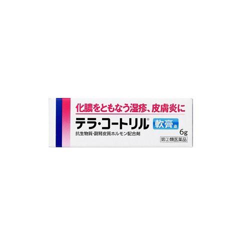 【送料無料】【指定第2類医薬品】テラ・コートリ...
