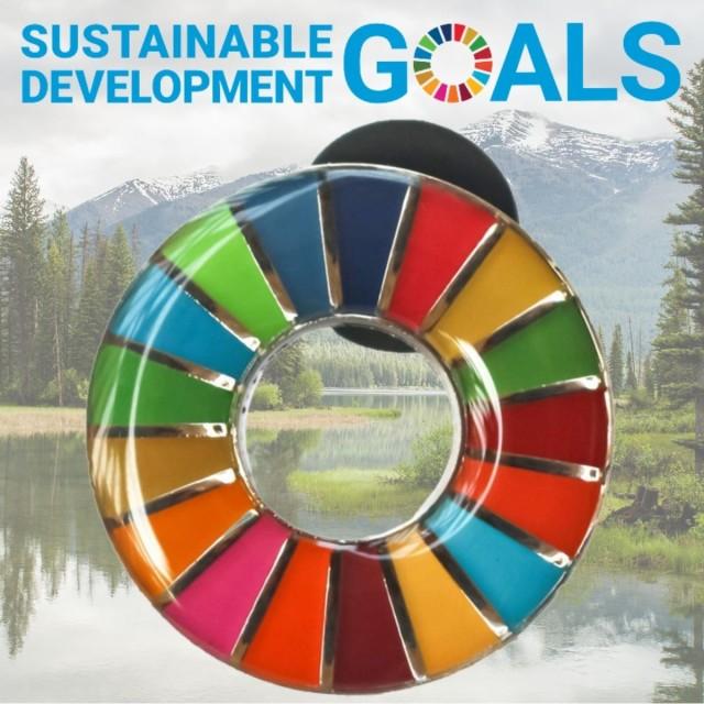 SDGs バッジ ピンバッジ 正規品 国連本部限定 丸...