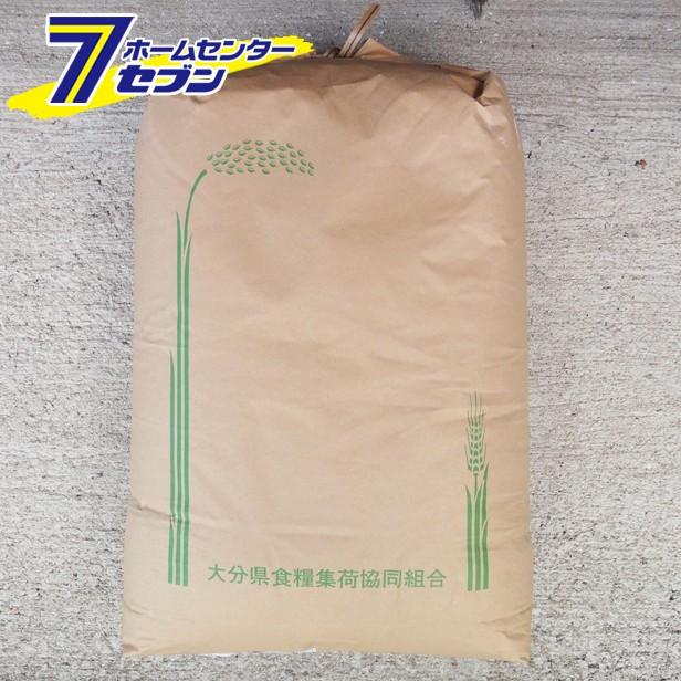 【玄米】新米 ひのひかり ヒノヒカリ 玄米 30k...