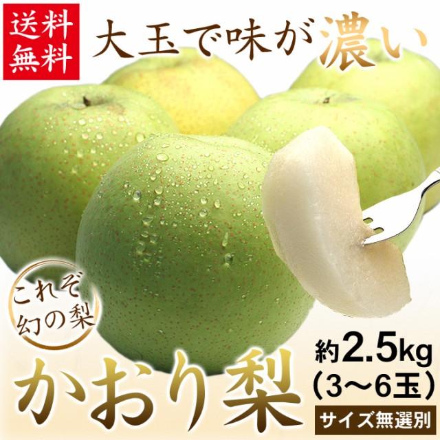 送料無料 梨 千葉県産 農家自家用 かおり梨 2.5kg...