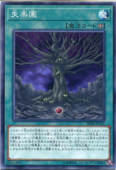 遊戯王 失楽園(ノーマル) SD38-JP021 フィー...