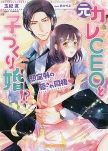 【新品】【ライトノベル】元カレCEOと子づくり婚!...