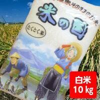 【送料無料】とくとく米10kg【沖縄・離島別途500...