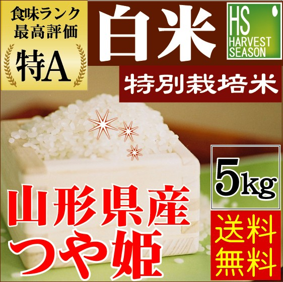 【送料無料】白米 29年産 特別栽培米 山形県産つ...