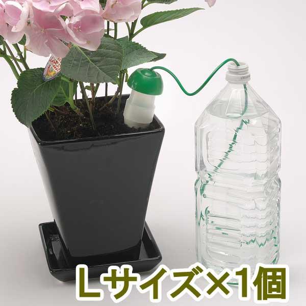 自動給水 みずやり当番 Lサイズ×1個 水やりはお...