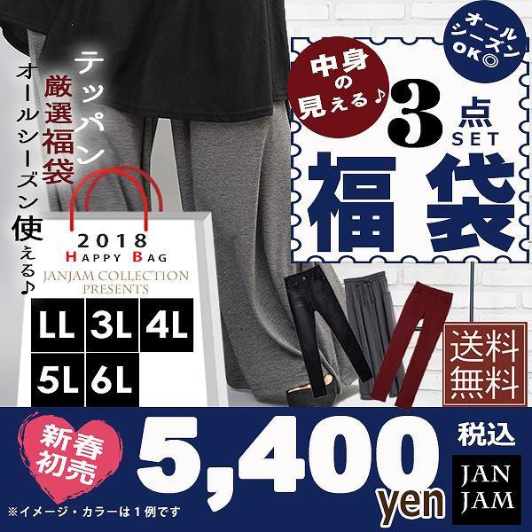 【送料無料※沖縄対象外】大きいサイズ レディー...