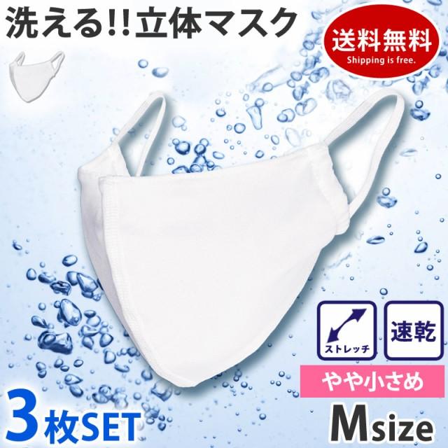 マスク 洗える 布マスク 3枚セット 水着マスク 本...
