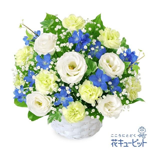 15時迄の注文で翌日届可【お供え・お悔やみの献花...