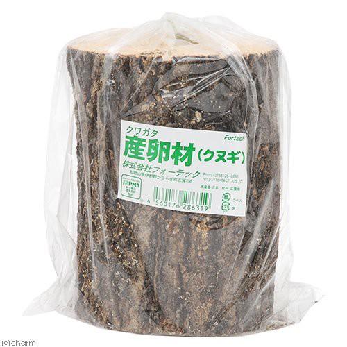 産卵木 クヌギ 7.5〜12cm