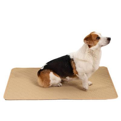 犬用 トレーニングパッド 犬シーツ ペットシーツ ...