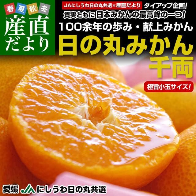 送料無料 愛媛県より産地直送 JAにしうわ 日の...
