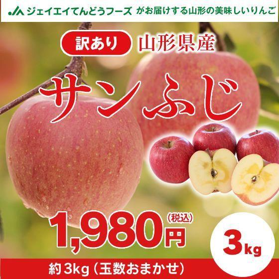 【訳あり】 山形県産 『サンふじ』 りんご 約3kg ...
