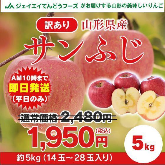 【訳あり】 山形県産 『サンふじ』 りんご 約5kg ...
