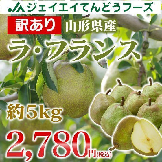 【訳あり】 山形県産 ラ・フランス 約5kg ご自宅...