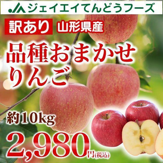 【訳あり】山形県産 りんご (品種おまかせ) 約...
