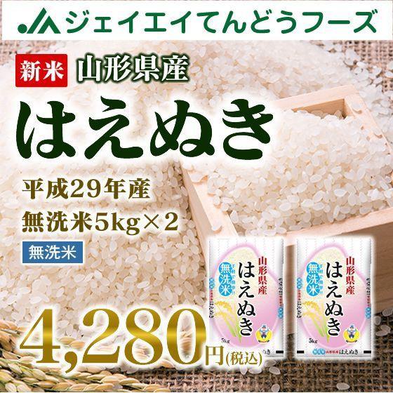 新米 山形県産 はえぬき 無洗米 10kg(5kg×2袋)...