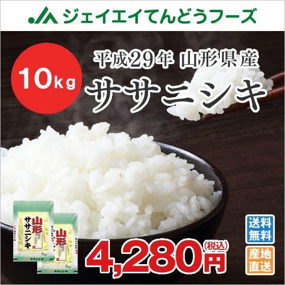 米 お米 山形県産 ササニシキ 精米 10kg(5kg×2...