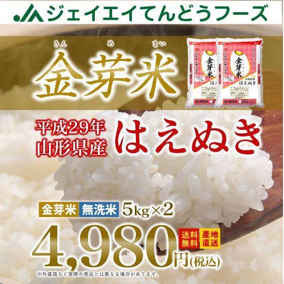 ★29年産米★ 【金芽米】 山形県産 はえぬき 10kg...