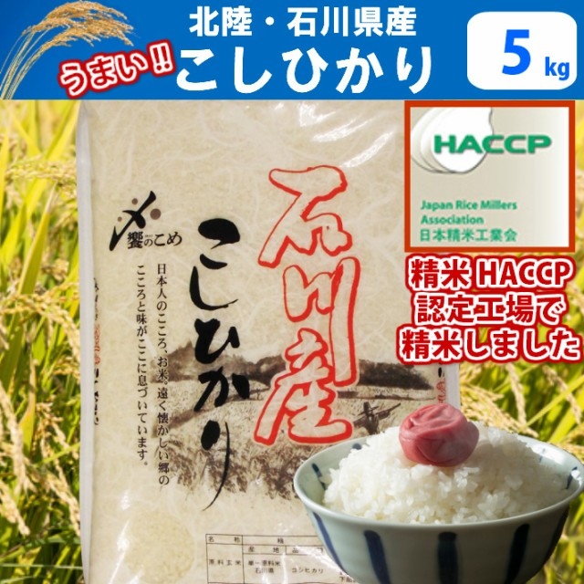 【H29年産】【精米】北陸・石川県産こしひかり(...