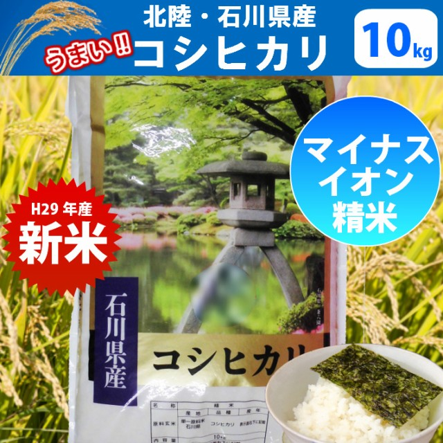お米 10kg【H29年産 新米】【精米】北陸・石川...