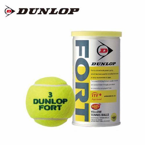 ダンロップ 硬式テニスボール 2球 フォート DFDYL...