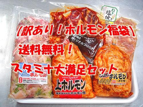 【訳あり】【ホルモン福袋】スタミナアップ大満足...