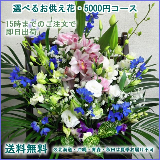 お供え花 【送料無料】選べる御供えのお花★5千円...