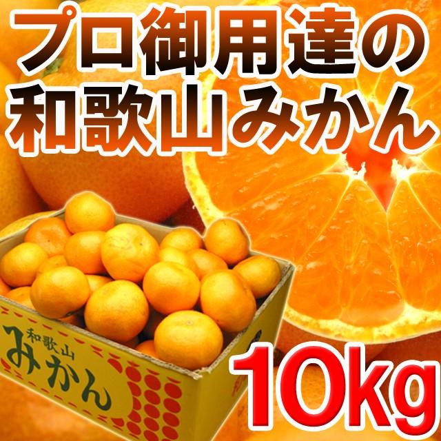 【送料無料】プロ御用達☆訳あり和歌山みかん10...